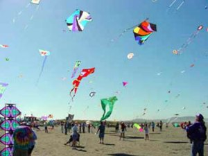 Makar-Sankranti-Festival-or-Kite-Festival-Celebration