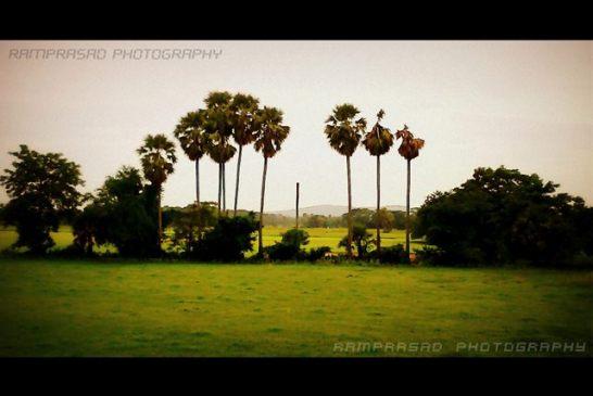 Govindpur Village 1