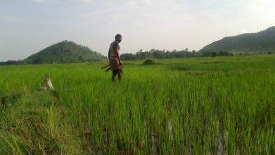 Govindpur Village 2