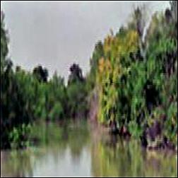 Derjang Irrigation Project of Angul
