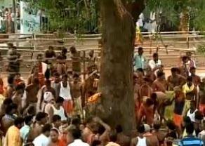 Balabhadra Daru Cutting