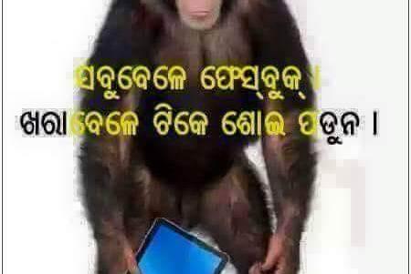 Odia Funny Pic - 3