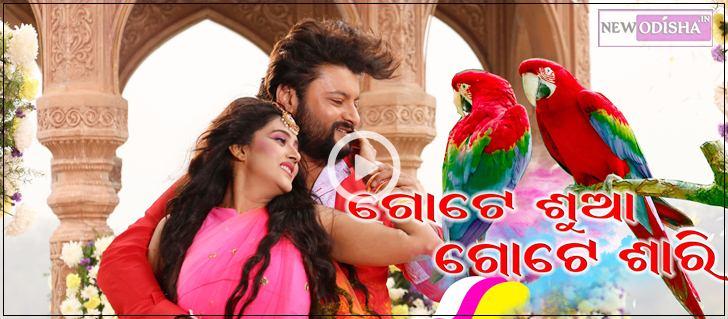 Hai re Hai Odia Video Song from the Movie Gote Sua Gote Sari