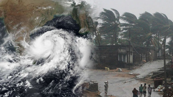 Cyclone Amphan: Trees uprooted, electric, telecom infrastructure damaged in Odisha