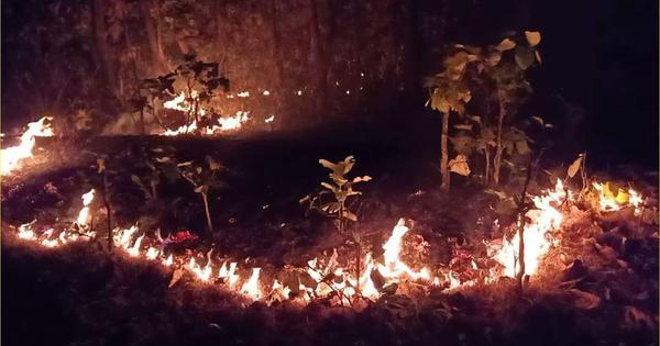 ODRAF Teams Arrive At Simlipal To Contain Forest Fire