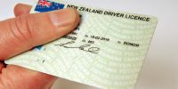 New Zealand drivers licence, Wellington, New Zealand, Monday, December 04, 2006. Credit:NZPA / Ross Setford
