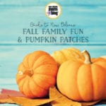2016 Guide to New Orleans area Pumpkin Patches