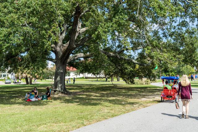 City Park Boat Amp Bike Rentals New Orleans