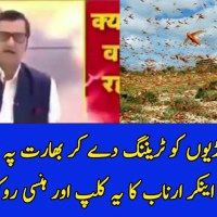Indian Media Blames Pakistan for Sending Trained Locust swarms