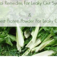 Best Protein Powder For Leaky Gut & Natural Remedies