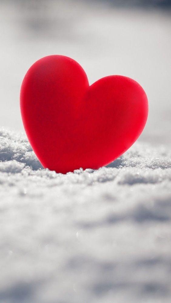صور قلوب حمراء جميلة جدا 2020 اجمل خلفيات قلوب حب حمره 2020 فوتوجرافر