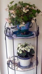 Classic Charm 172x300 25 Beautiful Indoor Plant Design Images