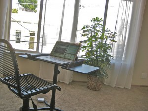 Simple Office Space 300x225 25 Beautiful Indoor Plant Design Images