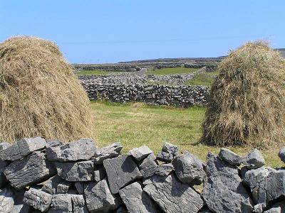 haystacks.jpg