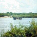pontoon-on-the-zambezi.jpg