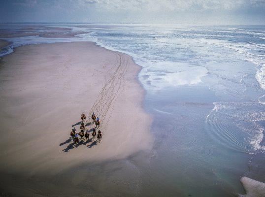 Somme-Hensons-en-baie-Credit_Tibo.org