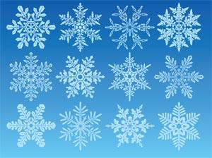 curiosities is every snowflake