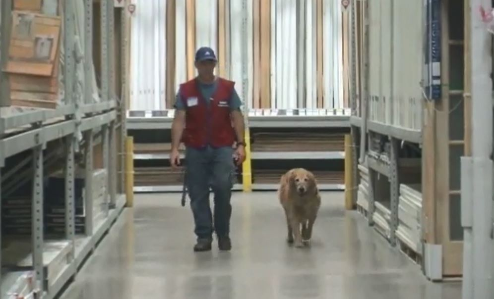 Lowes | NEWS10 ABC