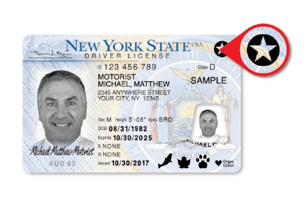 NY Real ID_651399