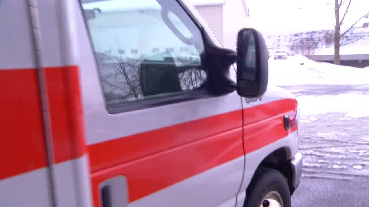 Ambulance_providers_rally_at_NY_Capitol__3_20190305212344