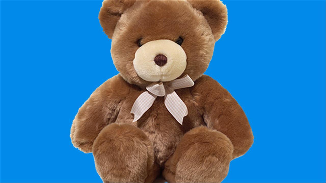 stuffed animal_254354