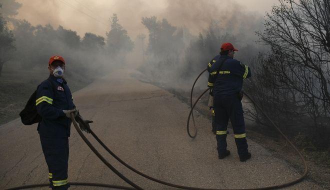 Πυρκαγιά σε δασική έκταση στην περιοχή Κοντοδεσπότι στο Δήμο Διρφύων β Μεσσαπίων Εύβοιας