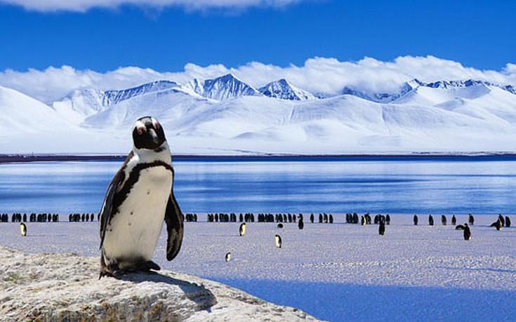Παγωμένη Ανταρκτική