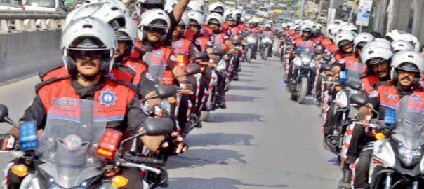 Dolphin Force Motorbikes