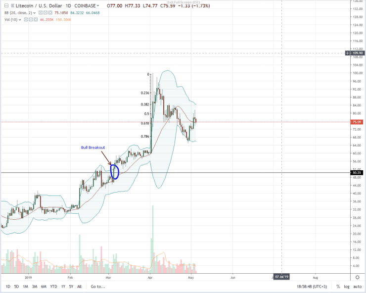 Will Litecoin (LTC) Rally to $1,000 After August 2019 Halving? -