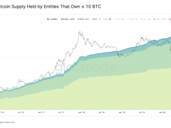 Small Investors are Flooding into Bitcoin as Whales Start Losing Market Dominance