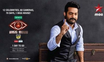 Bigg Boss Telugu Vote