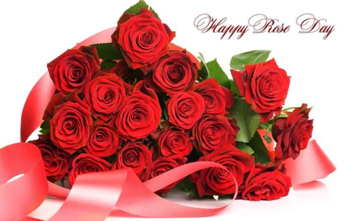 Happy Rose Day 2019