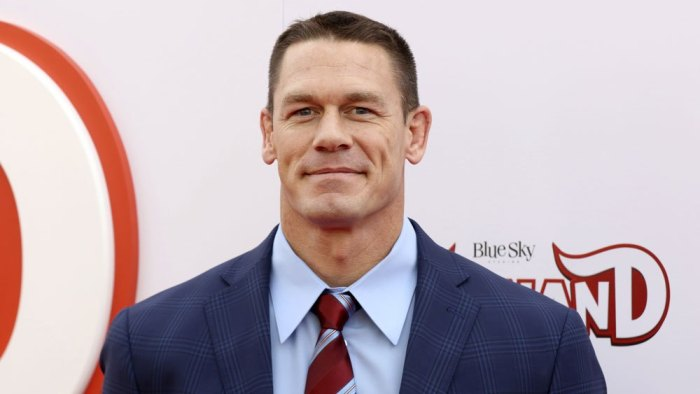John Cena join hands with Jackie Chan in a movie