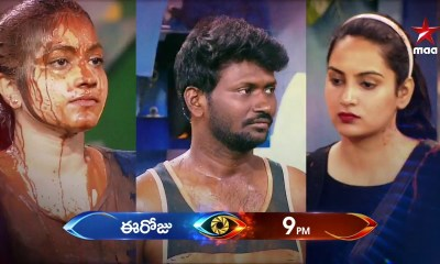 Bigg Boss Telugu Vote 2019, Season 3, Contestants List
