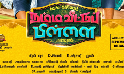Namma Veettu Pillai Movie Songs