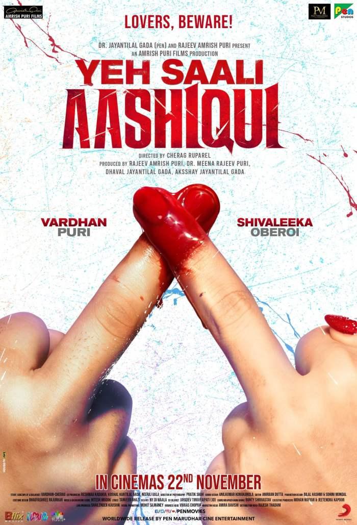 Yeh Saali Aashiqui Hindi Movie