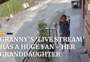 Chinese granny's 'live stream' has a dedicated fan – her granddaughter