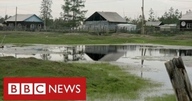 """Scientists say vast areas of Siberia are thawing with """"devastating consequences"""" – BBC News"""