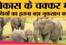 Shivalik Elephant Reserve को डिनोटिफाई करने जा रहा है Uttarakhand State Wildlife Board