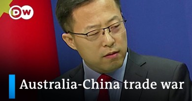 What's behind the growing trade dispute between China and Australia | DW News