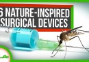 6 Surgical Devices Inspired by Nature