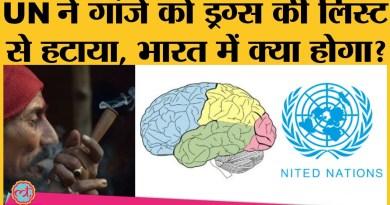 गांजा को Drugs की लिस्ट से हटवाने में भारत भी क्यों रहा UN में आगे?
