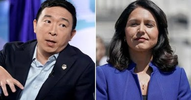 Former MSNBC Producer: Yang & Other Outsider Dems Were Blackballed