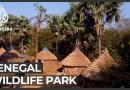 UNESCO warns over Senegal wildlife park