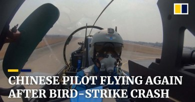 Chinese pilot praised for life-saving flying after bird downed air force jet returns to the sky