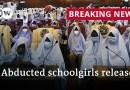 Hundreds of kidnapped schoolgirls in northwest Nigeria released | DW News