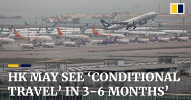 Travel may resume slowly 'in 3-6 months' with pandemic limits, says Hong Kong tourism chief