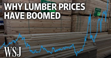 How the Pandemic Made Lumber America's Hottest Commodity | WSJ