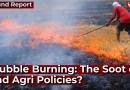 Stubble Burning: The Soot of Bad Agri Policies? | Farm Talks | Krishi Ki Baat | Punjab Farmers