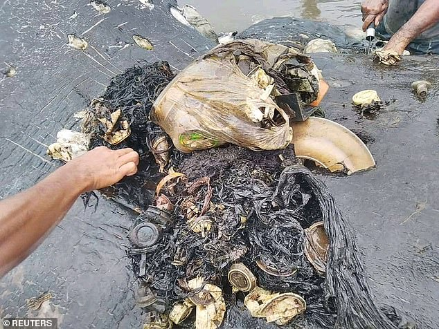 The whale had consumed a horrifying collection of plastic trash, including 115 drinking cups, 25 plastic bags, plastic bottles, two flip-flops and a bag containing more than 1,000 pieces of string